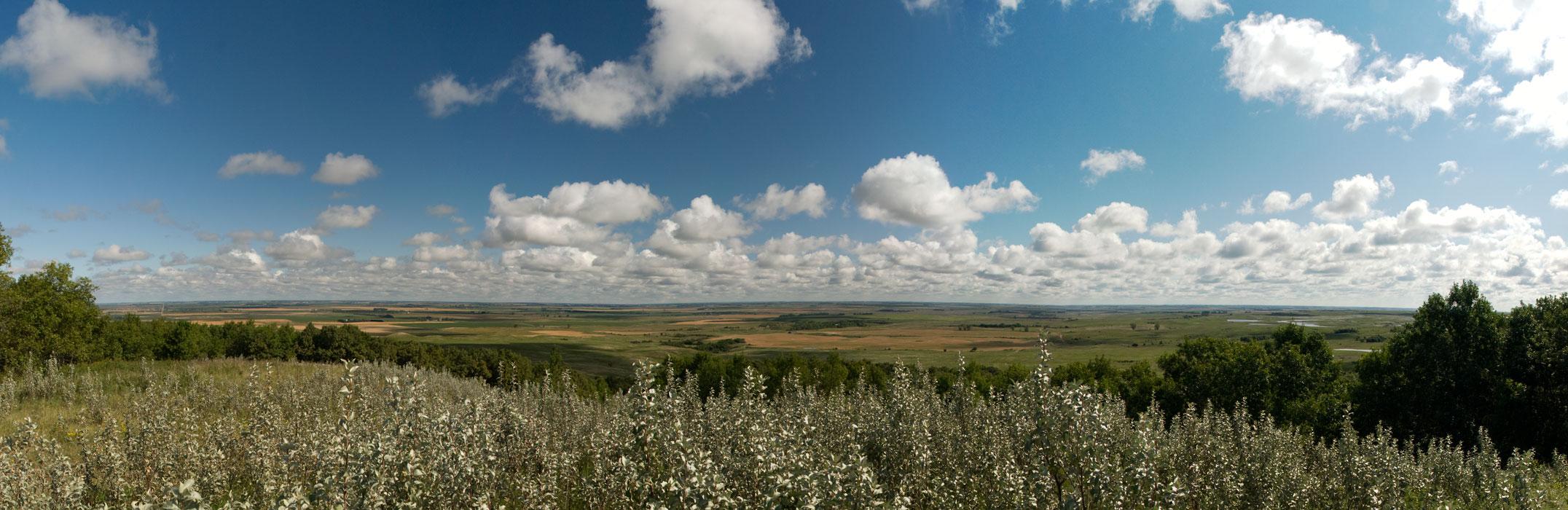 Eastern North Dakota Landscape
